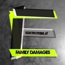 V.A. Elektrotribe – Family Damages