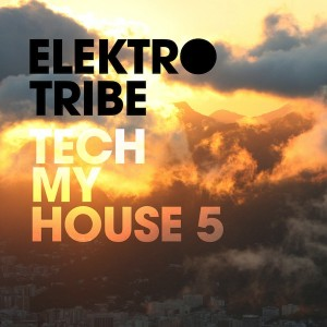 V.A. – Tech My House 5